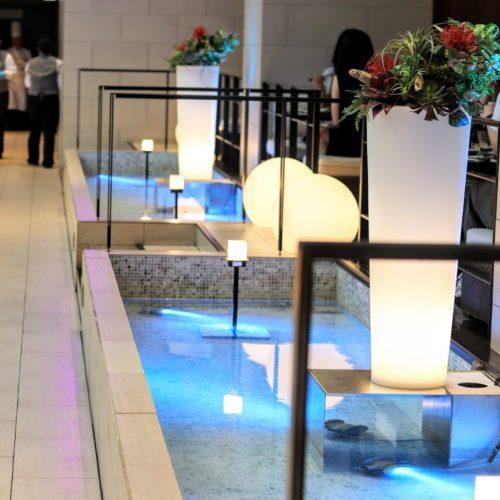 ハプナ(品川プリンスホテル)のビュッフェのハプナの泉