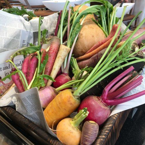 ガーデンダイニング(グランドニッコー東京 台場)のビュッフェ|陽子ファームの根菜