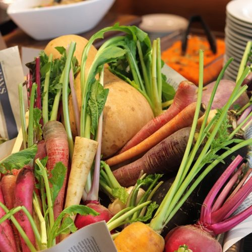 一休掲載 ガーデンダイニング(グランドニッコー東京 台場)のビュッフェ 陽子ファーム野菜