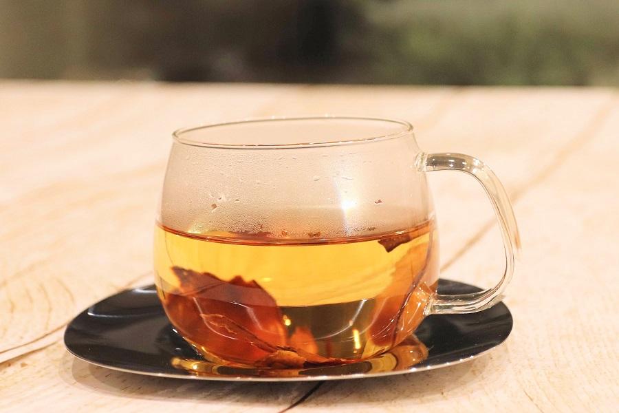 【通販12日目】「ほんまでっか!?TV」の森先生が推奨する『女神のごぼう茶』をお取り寄せ