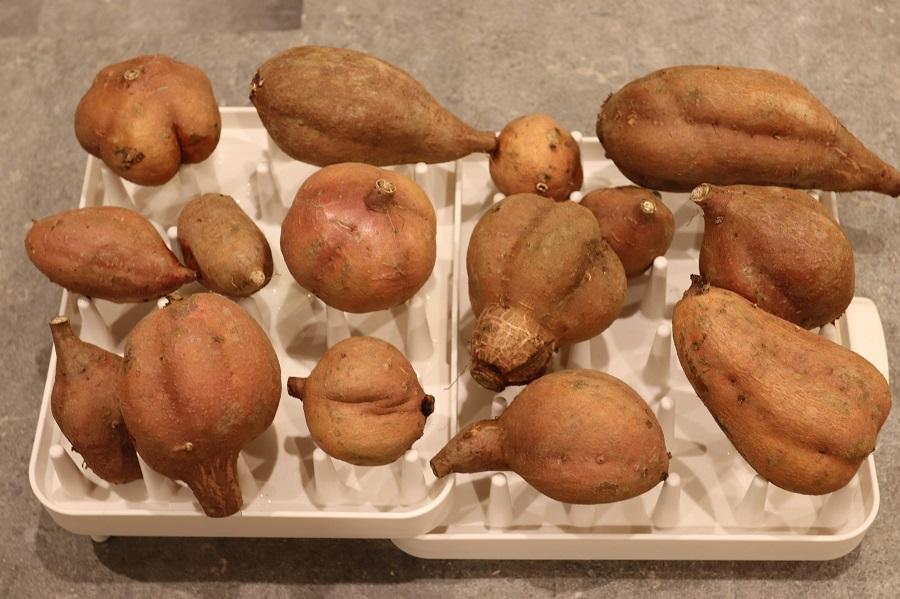 【通販56日目】宮城県から『訳あり安納芋』をお取り寄せ