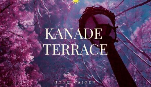 【86点】滝と楽しむ優美な空間『カナデテラス』のビュッフェ!ホテル雅叙園東京