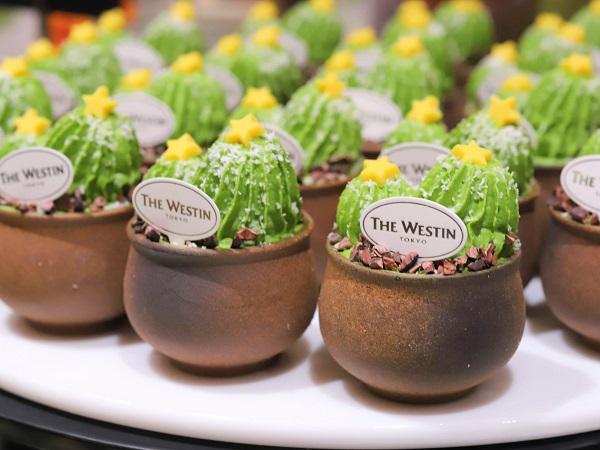 ウェスティンホテル東京『ザ・テラス』抹茶デザートビュッフェ2019(抹茶のティラミス サボテンスタイル)