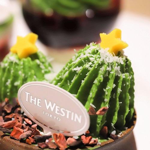 ウェスティンホテル東京『ザ・テラス』抹茶デザートビュッフェ2019(サボテン)